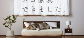 cat-furniture-neko-kagu-1